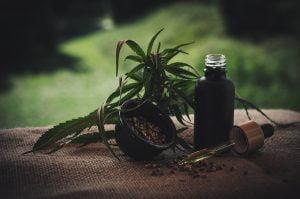 the top 25 cbd oils