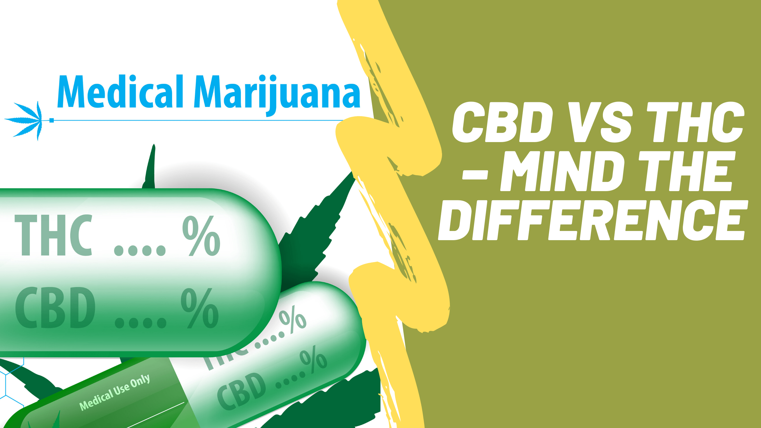 CBD vs THC – Mind the Difference and How They Work in the Body.